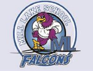 Mill Lake Falcon